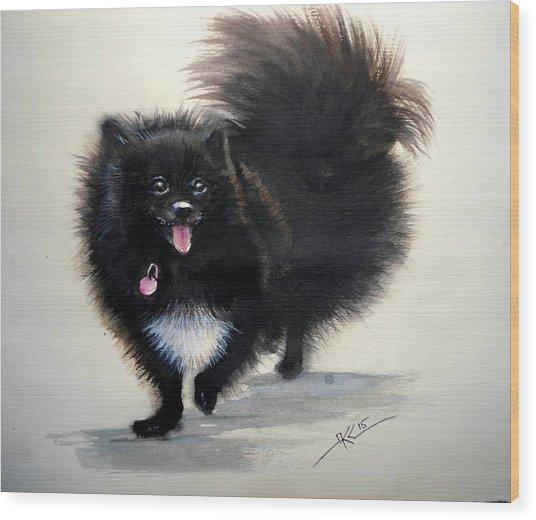 Black Pomeranian Dog 3 Wood Print