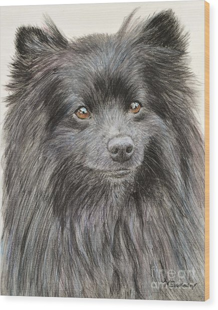 Black Pomeranian Painting Wood Print