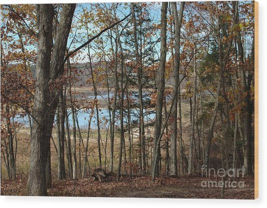 Black Rock Flats From The Mary Ann Wood Print