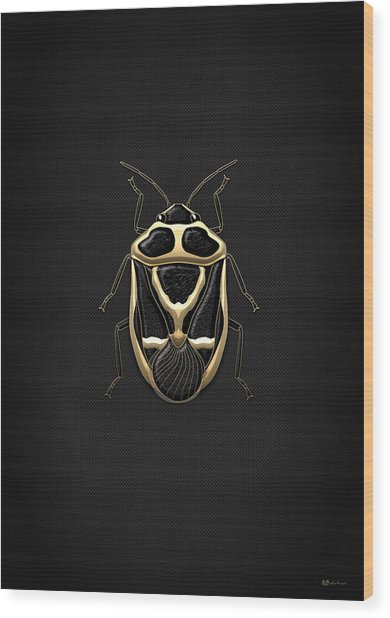 Black Shieldbug With Gold Accents  Wood Print