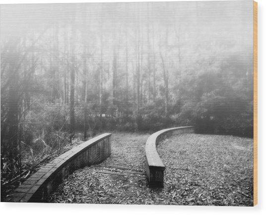 Black Spur Wood Print