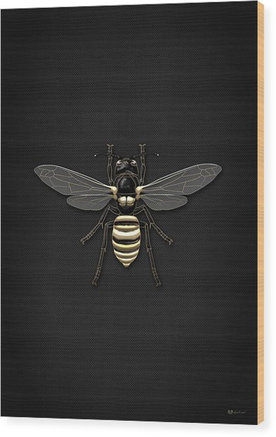 Black Wasp With Gold Accents On Black  Wood Print