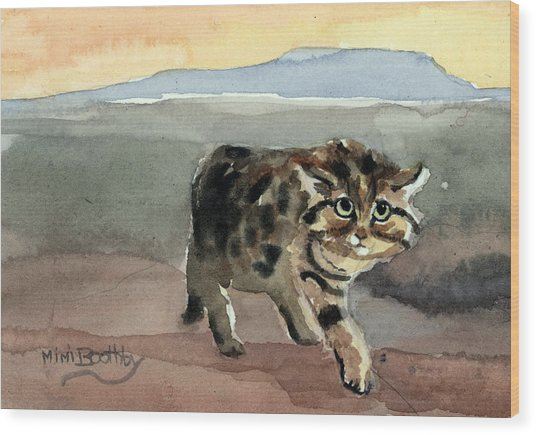 Blackfooted Cat Wood Print