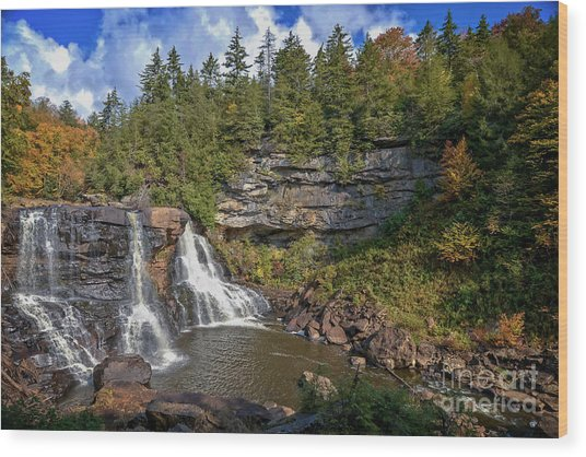 Blackwater Falls  In Autumn 3879c Wood Print