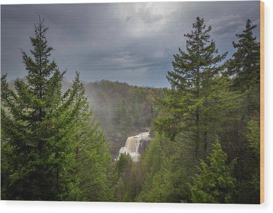 Blackwater Falls In Spring Wood Print by Michael Donahue