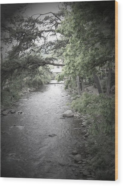 Blaim It On The Rain Wood Print by Jessica Burgett