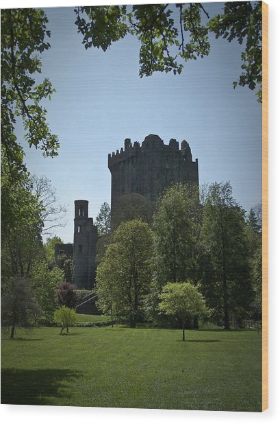 Blarney Castle Ireland Wood Print