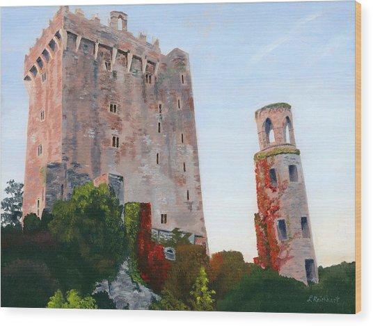 Blarney Castle Wood Print