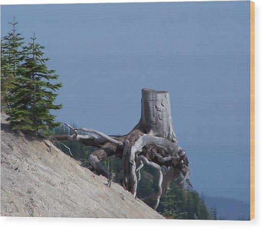 Blasted Stump  Wood Print