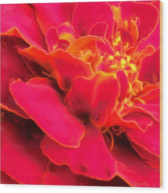 Blazing Pink Marigold Wood Print
