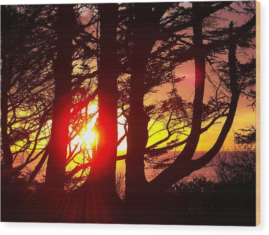 Blazing Sunset Wood Print