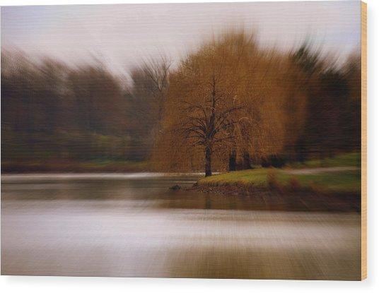 Blazing Zoom Wood Print