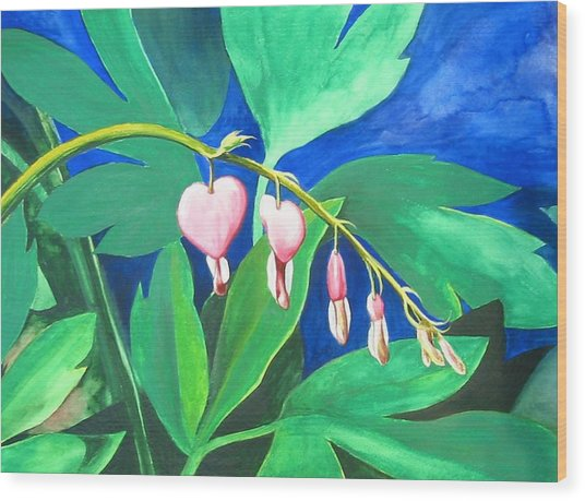 Bleeding Hearts Wood Print by Carrie Auwaerter