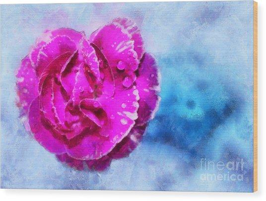 Blissful Pink Wood Print