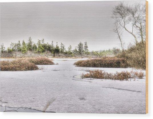 Blizzard At Whitesbog Wood Print by Louis Dallara