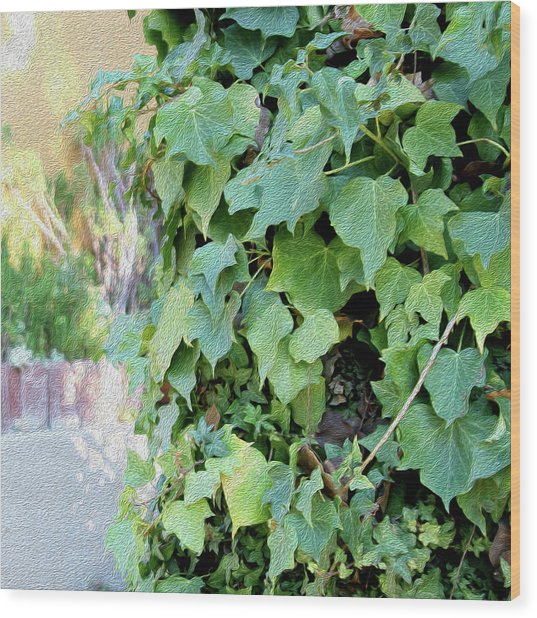 Block Of Ivy Wood Print