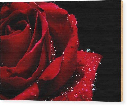 Blood Red Rose Wood Print