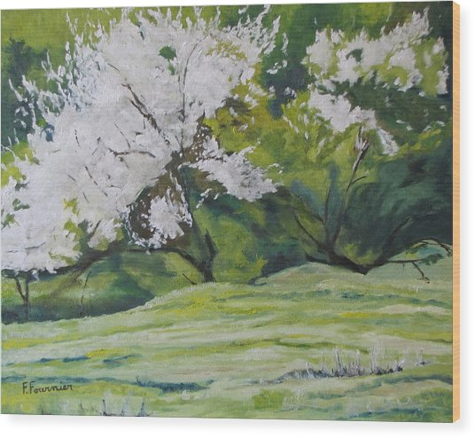 Blooming Wood Print by Francois Fournier