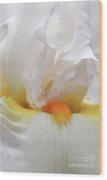 Blooming Iris Beauty Wood Print