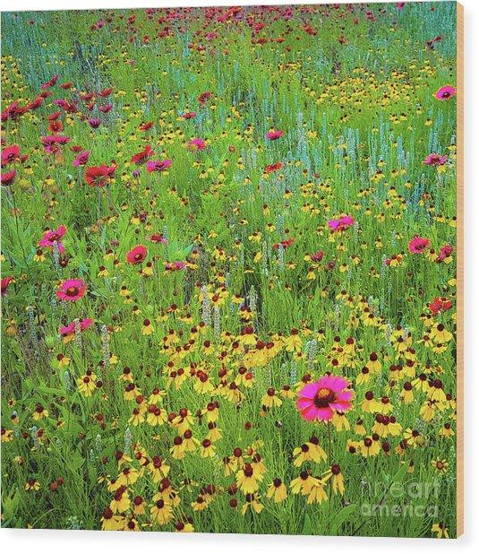 Blooming Wildflowers Wood Print