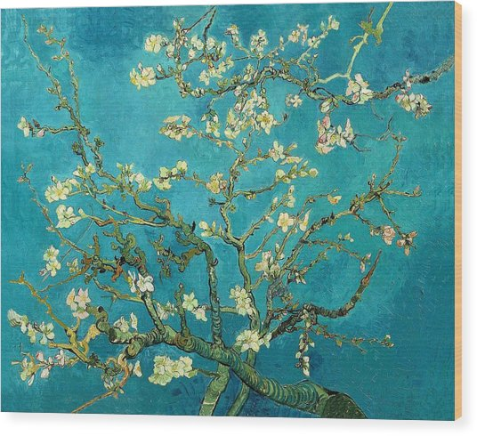 Wood Print featuring the painting Blossoming Almond Tree by Van Gogh