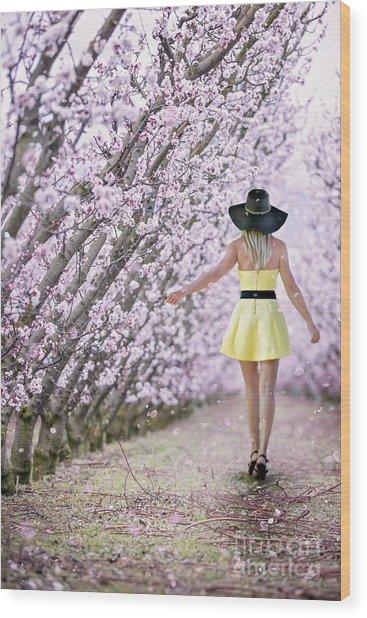 Blossoms Falling Like Snow Wood Print