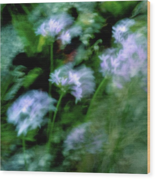 Blowing In The Wind Wood Print