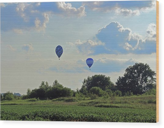 Wood Print featuring the photograph Blue Balloons Over A Field by Angela Murdock