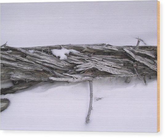 Blue Banff-14 Wood Print by Kevin Callahan