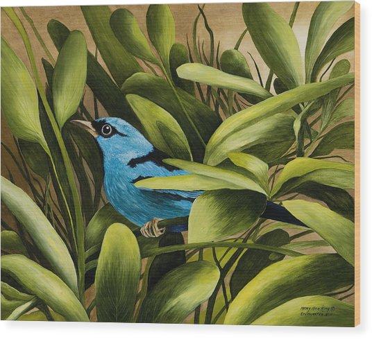 Blue Bird In Branson Wood Print