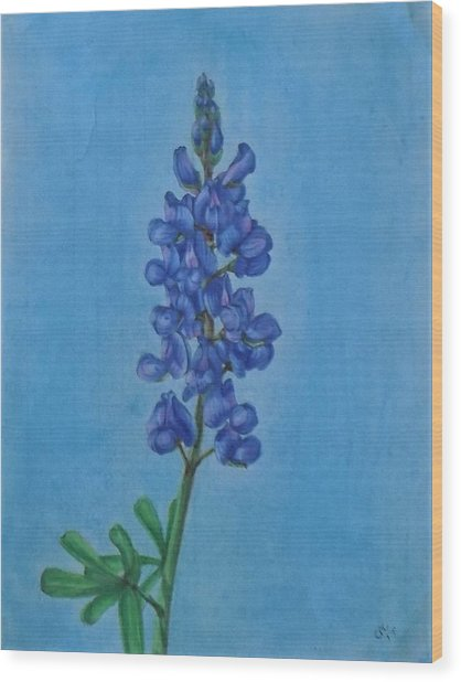 Blue Bonnet Wood Print