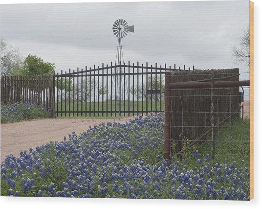 Blue Bonnets By Gate Wood Print