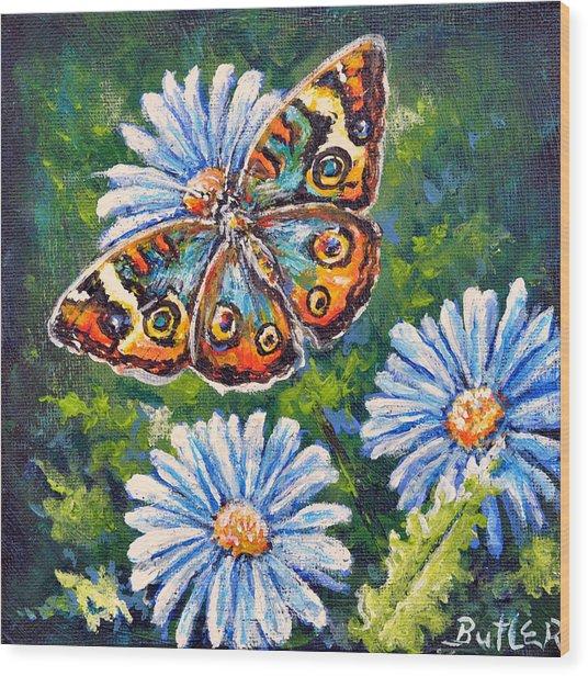 Blue Buckeye Wood Print