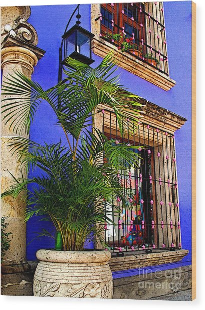 Blue Casa With Fern Wood Print by Mexicolors Art Photography