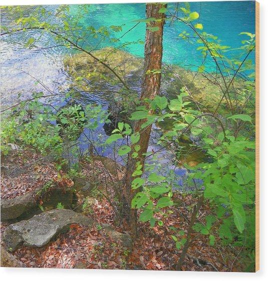 Blue Chill Wood Print