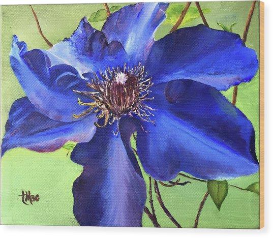 Blue Clematis Wood Print