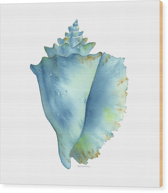 Blue Conch Shell Wood Print