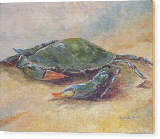 Blue Crab At Rest Wood Print by Beth Maddox