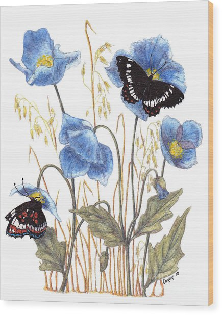 Blue-day Butterfly Wood Print