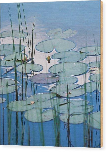 Blue Dreams Wood Print