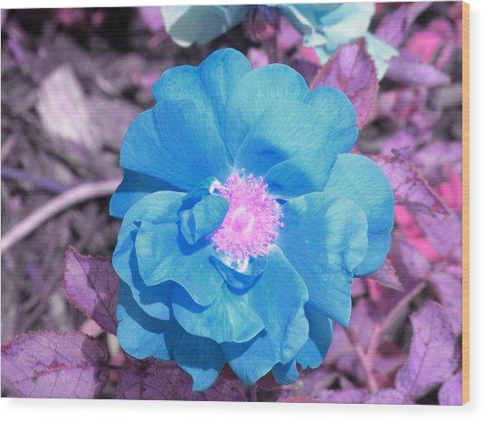 Blue Wood Print by Evan Pullins