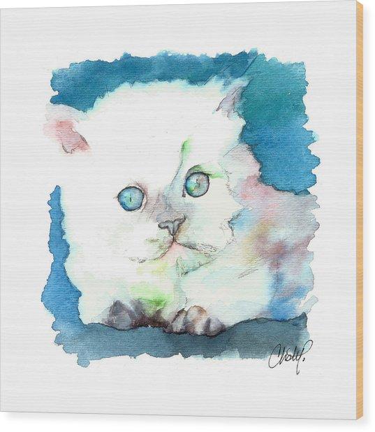 Blue Eyed Kitten Wood Print