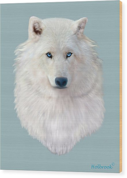 Blue-eyed Snow Wolf Wood Print