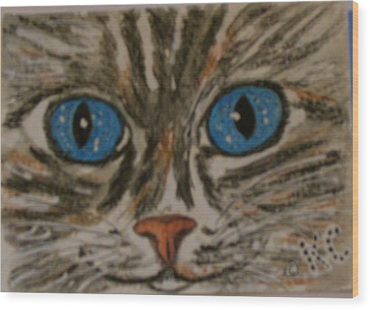 Blue Eyed Tiger Cat Wood Print