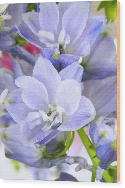 Blue Flowers Wood Print by Alyona Firth