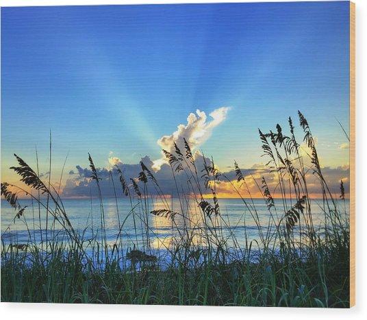 Blue Glow Wood Print