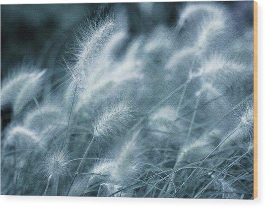 Blue Gras Wood Print