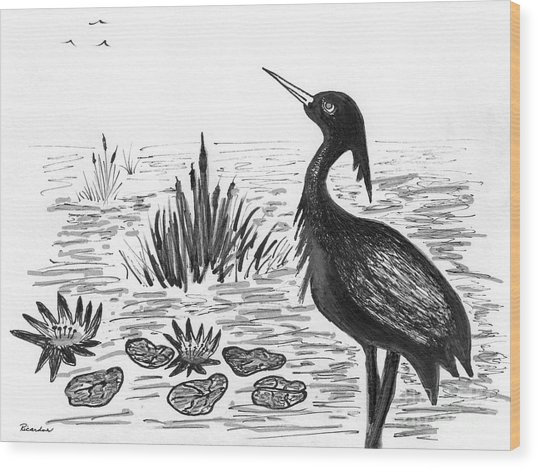 Crowned Night Heron Lily Pond Paradise In Ink D1 Wood Print
