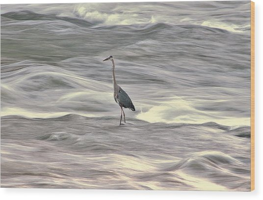 Blue Heron On The Grand River Wood Print