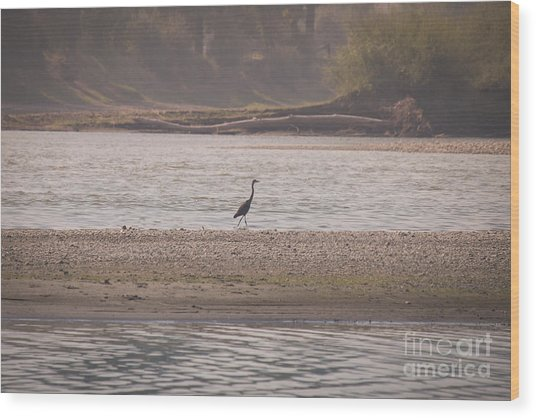 Blue Heron On The Yellowstone Wood Print